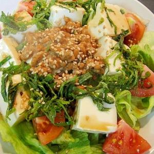 豆腐と納豆のサラダ