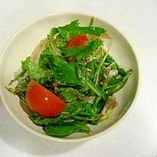 野菜を食べよ♪バルサミコ粒マスタードレッシングで★