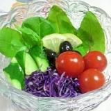 ベビーリーフと紫キャベツのサラダ