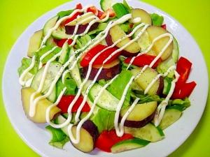 薩摩芋とパプリカの彩りサラダ