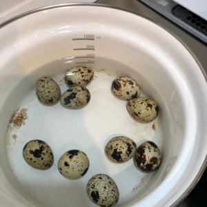 ウズラの卵の茹で方