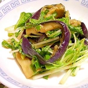 蒸し茄子と水菜の中華風生姜和え
