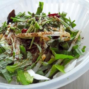 大根とえごまの葉のサラダ