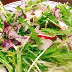 レッドオニオンと水菜のサラダ