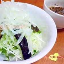 炒めたなすをプラス☆かいわれと玉ねぎのサラダ