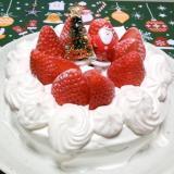 【ショートケーキ】ベーキングパウダー不使用