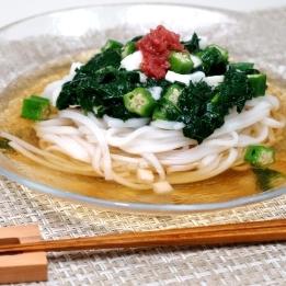 ネバネバ野菜の純米めん