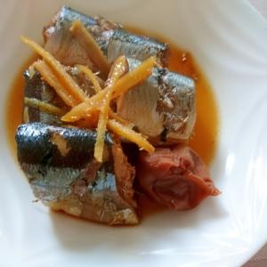 さんまの梅生姜煮✡️活力鍋