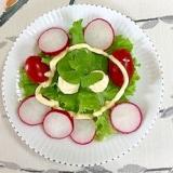 リーフレタス 、ミニトマト、ラディッシュのサラダ