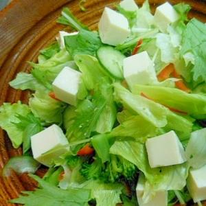たっぷり生野菜と塩豆腐のサラダ