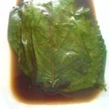 エゴマの葉の味ぽんと醤油漬け