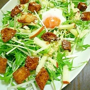 りんごと水菜の温玉のせサラダ