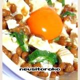 納豆・豆腐・オクラの卵黄のっけ