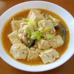 なすと長ねぎを加えた具だくさんの麻婆豆腐♪