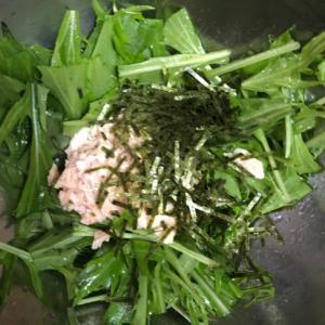 水菜とツナのサラダ^ - ^