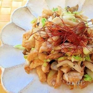 鷄むね肉と塩もみ白菜の炒め物