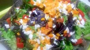サラダからし菜のサラダ