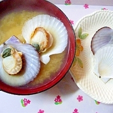 稚貝(ホタテの赤ちゃん)の味噌汁