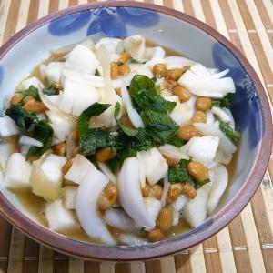 長芋と納豆と新玉ねぎのネバネバ和え