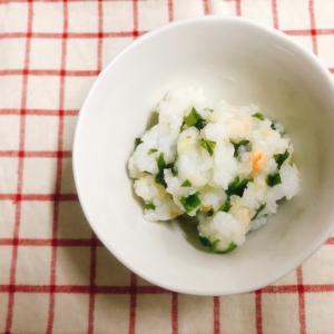 【離乳食完了期】鮭とわかめの混ぜご飯