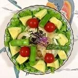セロリ、アスパラ、レッドキャベツのサラダ