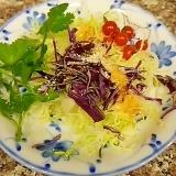 ダブルキャベツとパクチーのサラダ