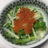 筋子で大根と菊菜のサラダ