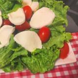 モッツァレラチーズとミニトマトとレタスのサラダ