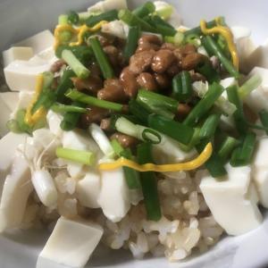 納豆と青ネギの玄米豆腐どんぶり
