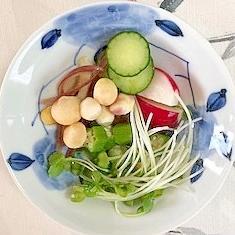 胡瓜、ラディッシュ、茗荷、貝割れ、オクラの和え物