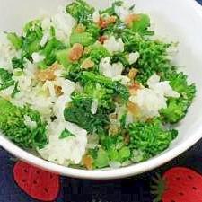 干し海老と菜の花の混ぜご飯