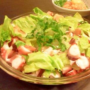 タコとマグロの海鮮サラダ