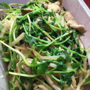 豆苗と豚ロース肉のもやし生姜炒め♩