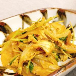 【簡単】白菜と豆苗のピリ辛カレー炒め
