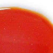 美味即席★手作りラー油