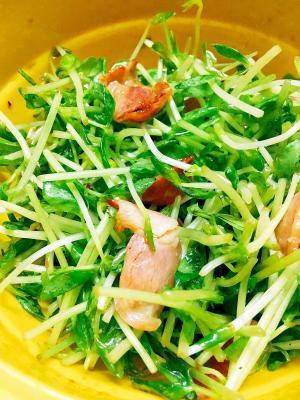 半生食感☆ベーコンと豆苗のサラダ