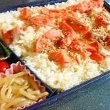 ご飯喰いのための 焼き鮭・男子弁当