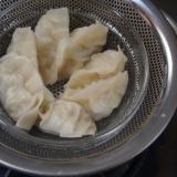 白菜の蒸し餃子