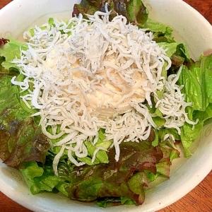 簡単ヘルシー【低カロリー】しらす豆腐サラダ
