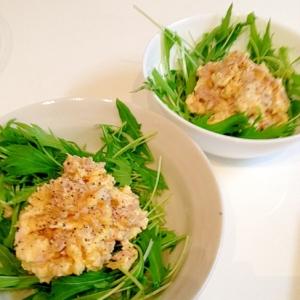 ツナ卵で食べる水菜サラダ