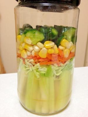基本の甘酢 いろいろ野菜の甘酢漬け
