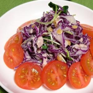 紫キャベツとツナのデリ風サラダ