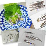 【鰯】海釣り 小イワシ 素手で刺身 カタクチイワシ