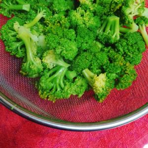 塩茹でブロッコリーの作り方
