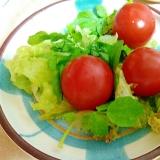 クレソン&サニーレタス&ミニトマトのサラダ