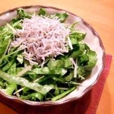 ごま油で食べる緑の歯ごたえサラダ