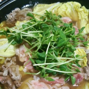 豆苗と牛肉のお鍋