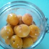 完熟梅ではちみつシロップ