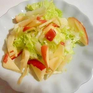 さっぱり☆白菜と林檎の塩揉みサラダ