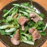鶏モモ肉とオクラの和風サラダ